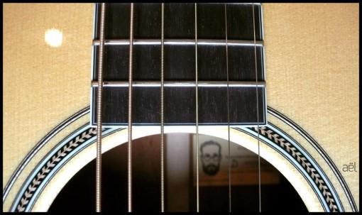 santa_cruz_guitar_ael_baritone (2)