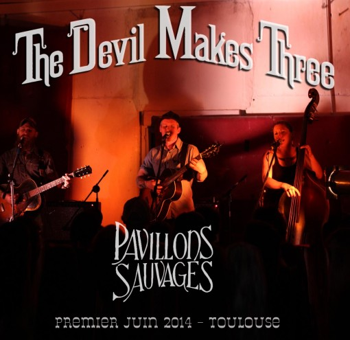 Affiche pavillons sauvage Devil MT copie
