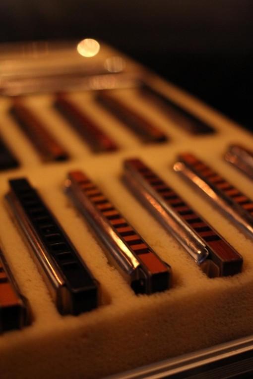 Concert Pins Nico Barbe Dédé juin 14 (5)