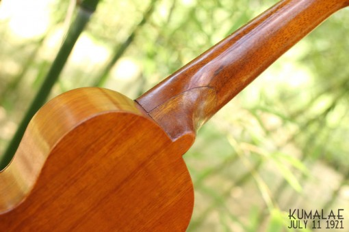 Ael_ukulele_kumalae_11_july_1921 (10)