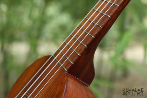 Ael_ukulele_kumalae_11_july_1921 (13)