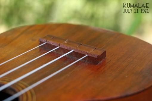Ael_ukulele_kumalae_11_july_1921 (14)