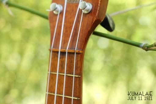 Ael_ukulele_kumalae_11_july_1921 (7)