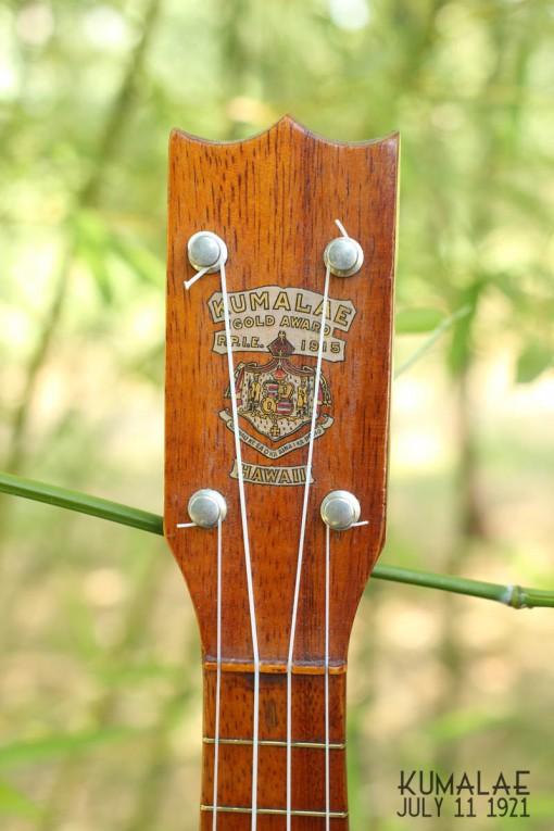 Ael_ukulele_kumalae_11_july_1921 (8)