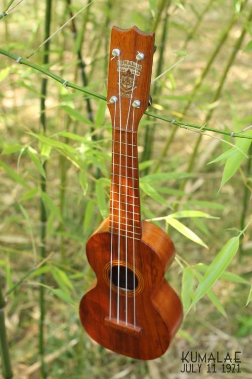 Ael_ukulele_kumalae_11_july_1921 (9)