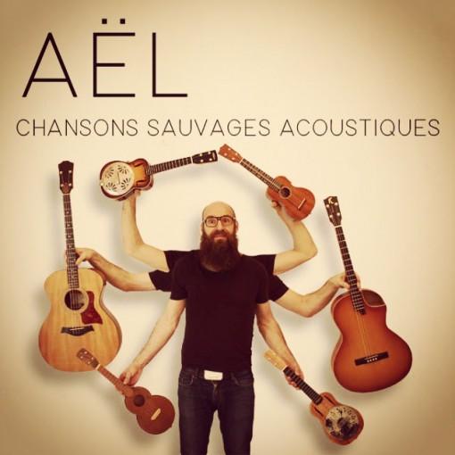 ael_concert_acoustic_ukulele_guitar